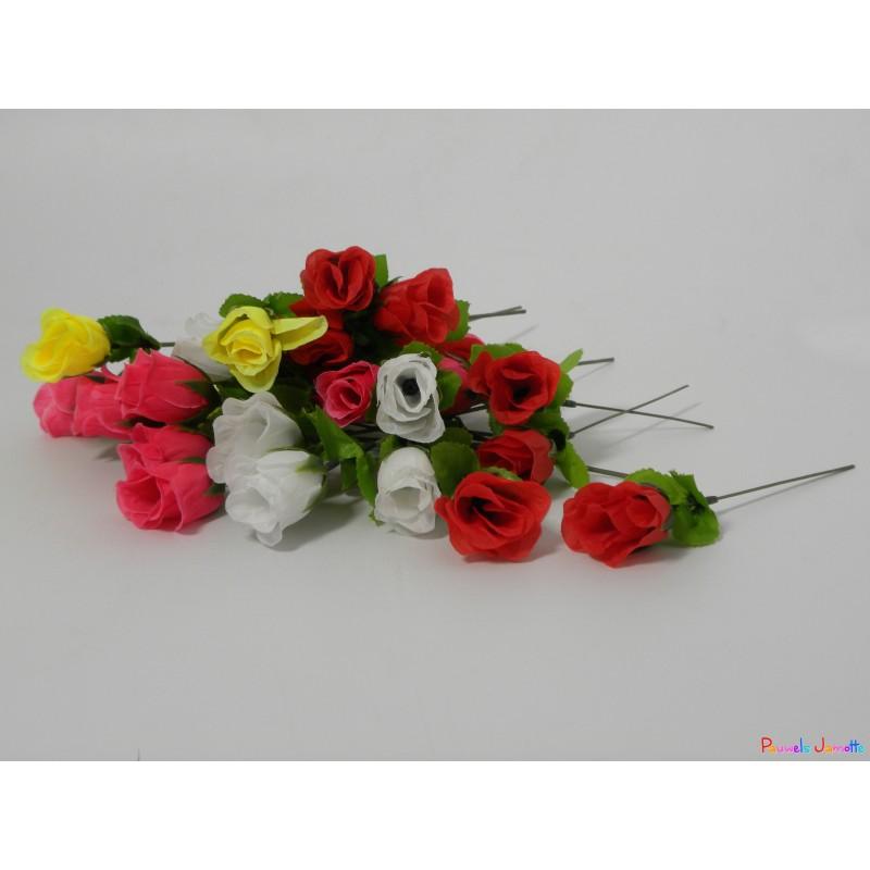 Bouton de rose 18cm couleurs asst pauwels jamotte for Envoyer des roses